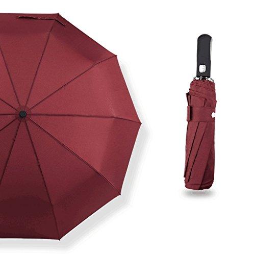 Pare-soleil couche 10 os parapluie grand parapluie automatique résistant au vent hommes et femmes affaires double journée ensoleillée pluie parapluie ( Color : C )