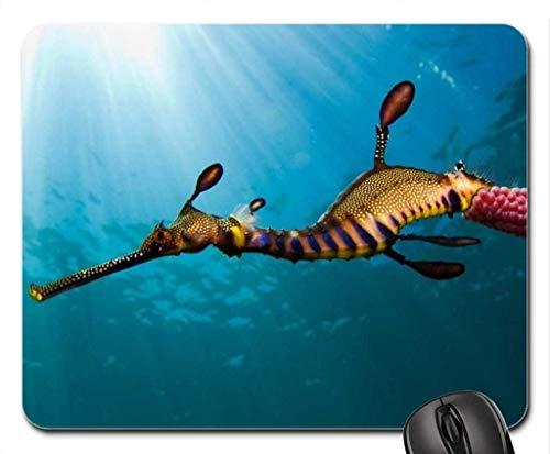 Yanteng-Mauspads, Seadragon, Weedy-Mauspad, Mousepad (Fisch-Mauspad)