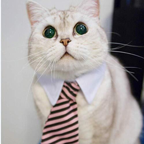 N/F Lazos de gato lindos lazos para mascotas, collar de perro, lazo para mascotas, disfraz de mascota de aspecto inteligente