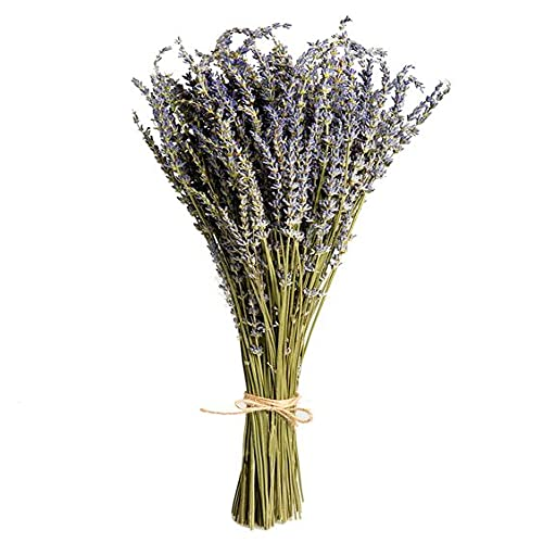 Skagele Lavender Dried Flowers, 100% Natural Lavender Dried Flowers Hand Picked, 4.6 oz Per Bunch 160-180 Stems,for Home Decoration, Photo Decor, Home Fragrance, DIY