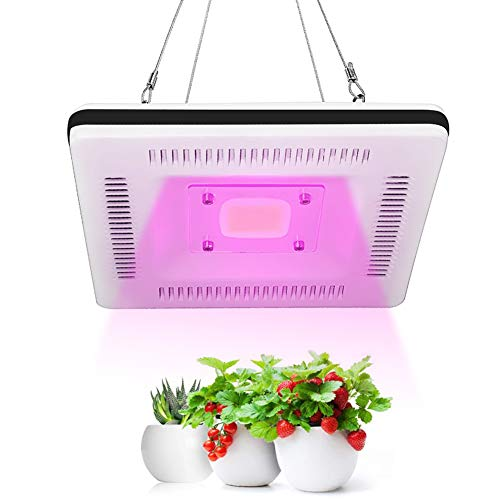 100W Waterproof LED Grow Light for Indoor plants,Plant Grow Lamp Full Spectrum with Switch,Smart and Silent Plant Lights for Grow Tent Seeding Growing Flower&Vegetable Succulent Cactus Tomatoes