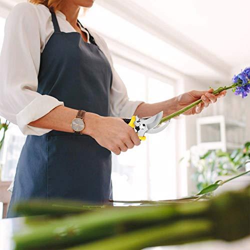 剪定鋏耐久性剪定ばさみバイパスタイプ園芸ハサミ果樹、庭木の剪定ステンレス刃