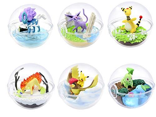 YHK Pokemon Terrarium Sammlung Nr. 5, Rapidash Terrarium, Pidgeotto Terrarium, Pokemon Staffel 5 Sammlung Anime Art (6er-Set)