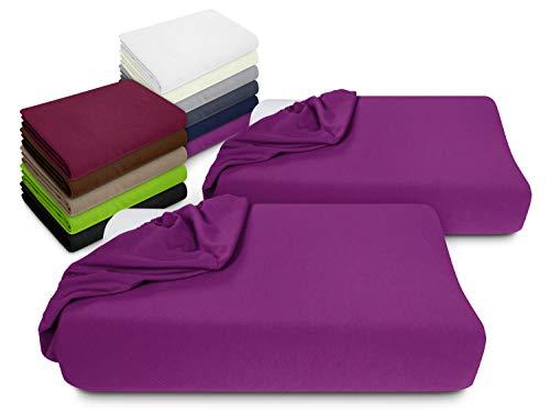 npluseins 2er Pack Spannbezüge Kissenbezüge für Gesundheitskissen 1450.2049, Spannbezug für Gesundheitskissen, lila
