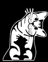 Keen Cat - Whatcha Doin? - I Can Haz? - Car Vinyl Decal Sticker   6 X 5 in