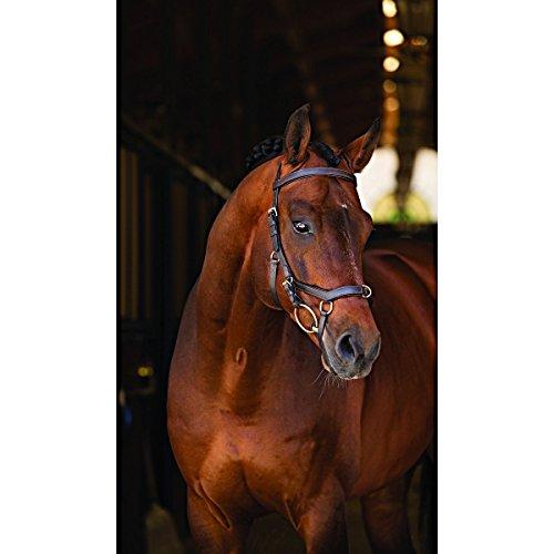 Horseware Rambo Micklem Multibridle 3 in 1 Trense Zaum Größe und Farbe wähbar (schwarz, WB)