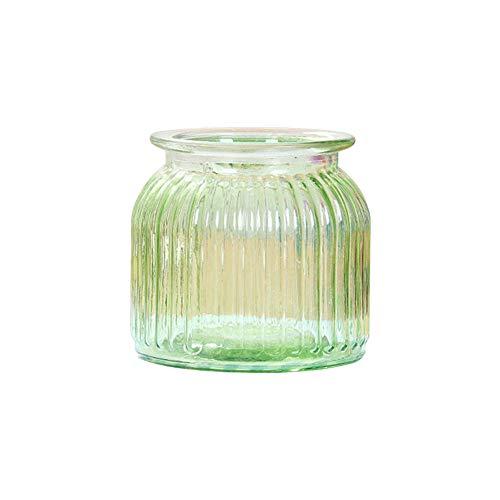 Skyeye 1PCS Moderne col Large Vase en Verre Rayures Verticales Jacinthe d'Vase en Verre hydroponique Vase pour la Maison Décoration de Jardin Vert 10.8 *11 CM