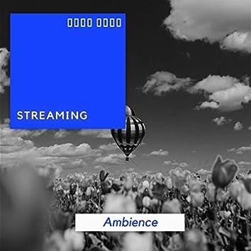 Streaming Ambience, Vol. 7