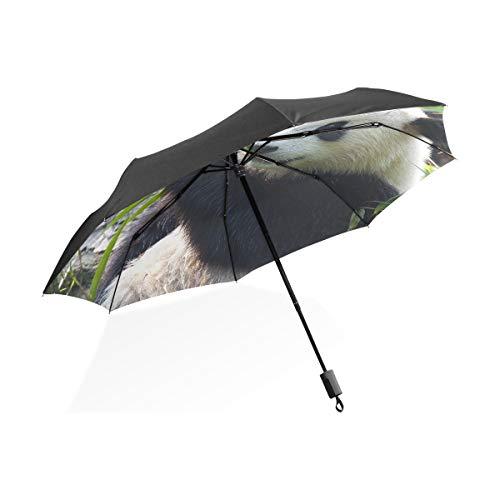 Paraguas Gran Lluvia Hambrienta Oso Panda Gigante Comiendo Bambú Paraguas Plegable Compacto...