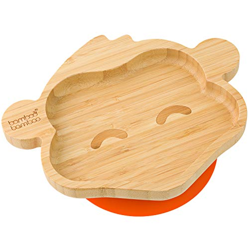 Best Plate for Baby Suctions