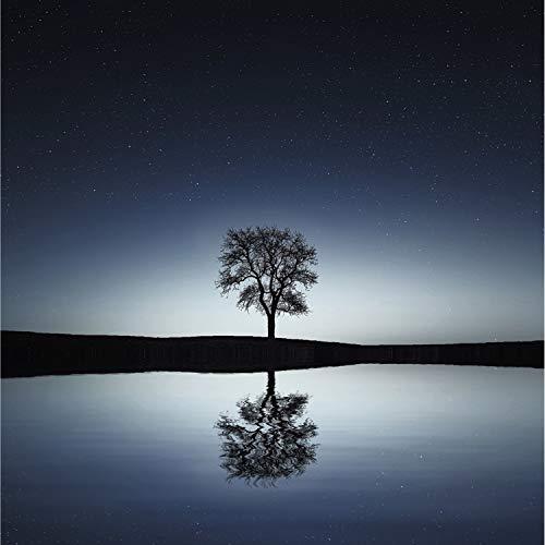# 1 Relajación Pura: Música de la Nueva Era Para Spa, Masajes, Música de Spa, Reiki, Zen