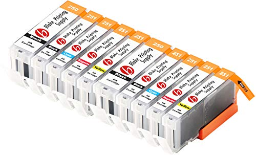 Blake Printing Supply Compatible Ink Cartridge Replacement for Canon PGI-250XL, CLI-251XL, Canon 251, Canon 250 (Pigment Black, Black, Cyan, Magenta, Yellow, 10-Pack)