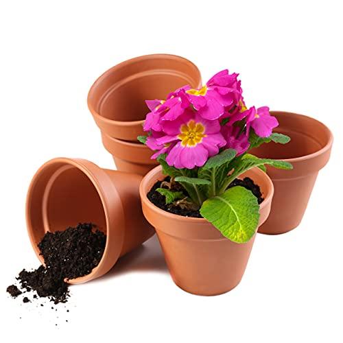 Garden Mania - 12 Macetas para Flores de Terracota, Ollas de Barro Ceramico, 8cm - Mini Cactus...