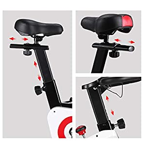 Exercise Bike, CHAOKE Indoor Cycling Bike, Stationary Bike Magnetic Resistance Whisper Quiet for Home Cardio Workout Heavy Flywheel & Comfortable Seat Cushion with Digital Monitor