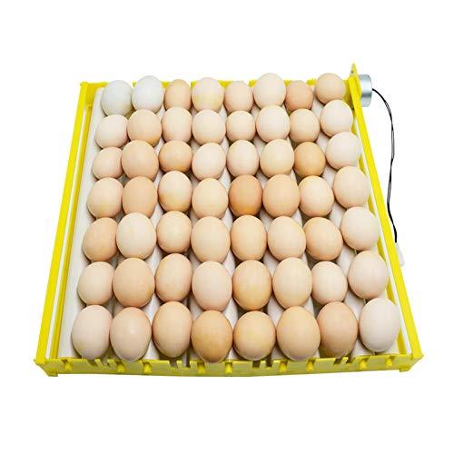 Incubadora de huevos de diseño HopeU5 tipo rodillo 9 tubos bandeja gi