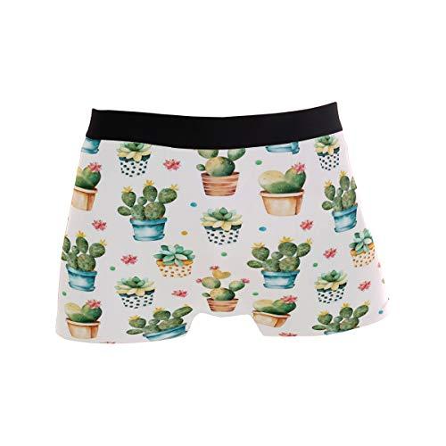 MNSRUU Herren Unterhose Aquarell Kaktus Pflanzenskulenten Regular Leg Boxershorts Gr. L, Multi