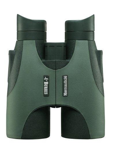 Burris 12040900 - Prismático (8 x 56), verde