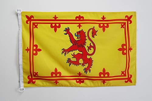 AZ FLAG Flagge SCHOTTLAND KÖNIGLICH 90x60cm - Schottische Fahne 60 x 90 cm Aussenverwendung - flaggen Top Qualität