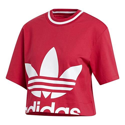 adidas Originals Women's Cropped Tee T-Shirt