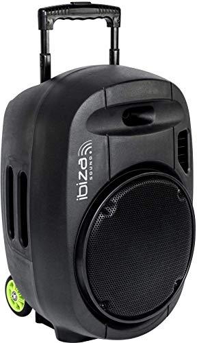 """PORT12VHF-MKII - Ibiza Sound - Sistema de sonorización portátil autónomo 12"""" / 700W con USB-MP3, Bluetooth, Vox, 2 micros VHF, Negro"""