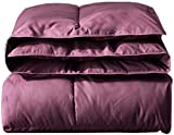 Quilts, Duvets Quilt Winter Core Winter Thick Warm Dormitory Single Double Air Conditioning Winter Quilt Child Adult Quilts (Couleur: Vin Rouge, Taille: 180 * 220Cm 3Kg)