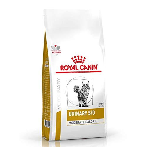 Royal Canin Veterinary Diät Harnspflege S/O mittelgroße Kalorien, komplettes diätetisches Trockenfutter für Katzen mit Urinsäure Eigenschaften, 9 kg