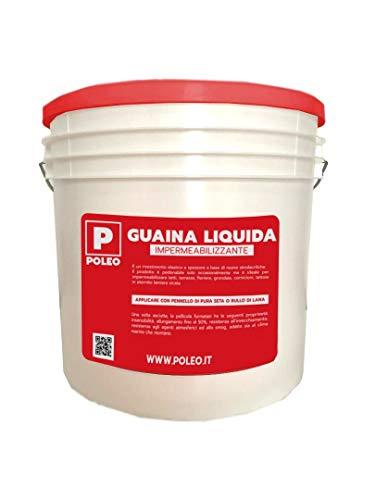 GUAINA LIQUIDA Impermeabilizzante *GUAINA* Grigia/Bianca/Rossa da 1-5-20 Kg (5 KG, GRIGIO)