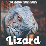 Lizard Calendar 2021-2022: April 2021 Through December 2022 Square Photo Book Monthly Planner Lizard, small calendar