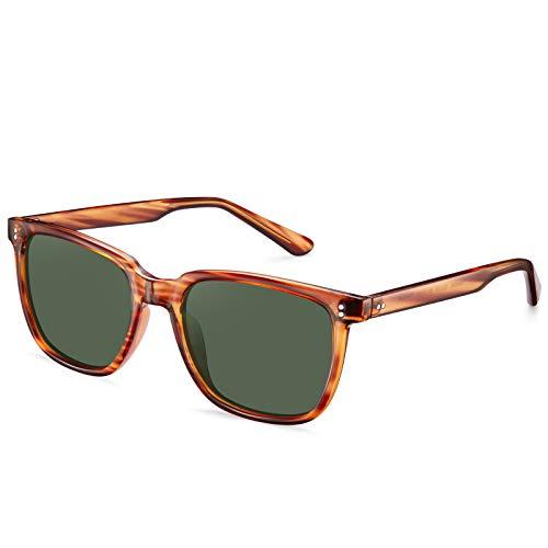 Carfia Retro Gafas de Sol Hombre Polarizadas UV400 Protección Acetato Marco Conducción Glasses