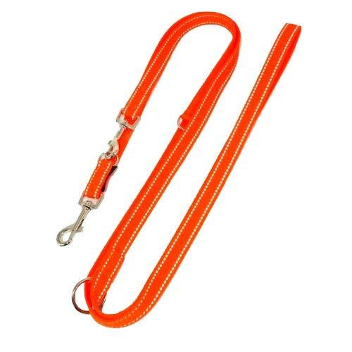 elropet Hundeleine Doppelleine Gurtband reflektierend 20mm 5,00m orange 5fach verstellbar für mittlere und große Hunde