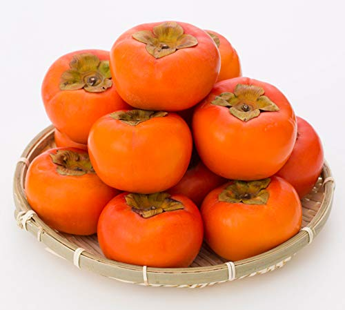 グリーンハウス『富有柿』