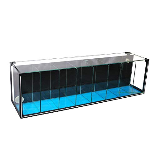 Aquarium Zucht-Becken Betta 38 L, Garnelen-, Quarantäne-, Ausstellungsbecken