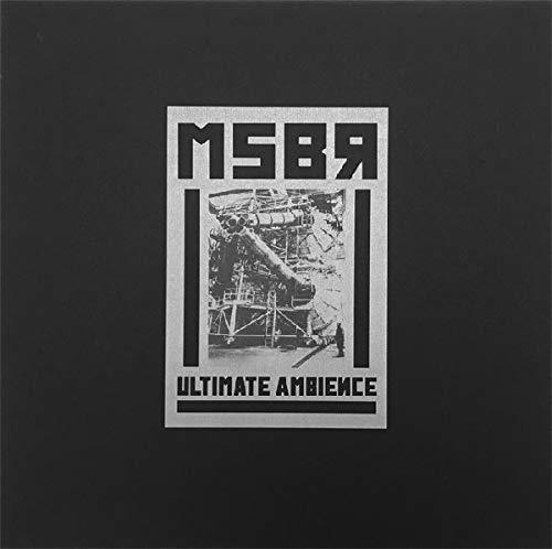 Ultimate Ambience [Vinyl LP]