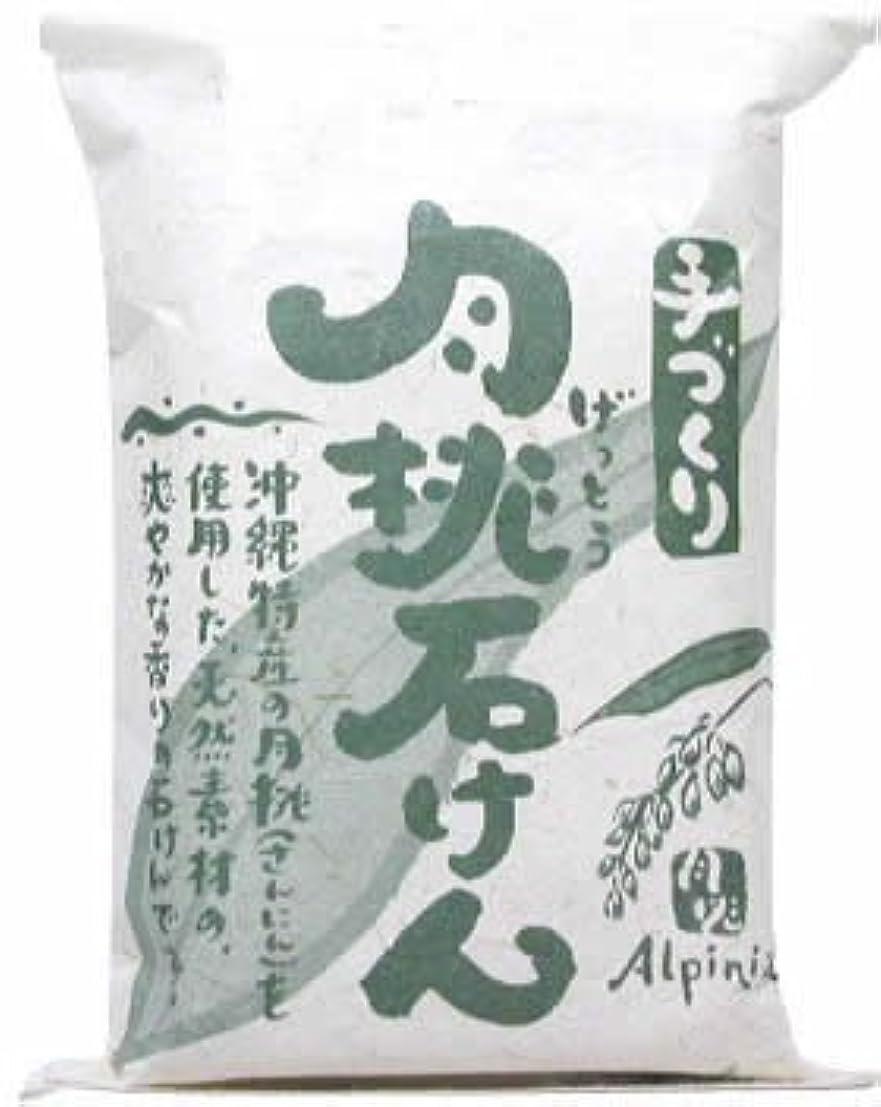 広告労働上流の日本月桃 手づくり月桃石けん 100g
