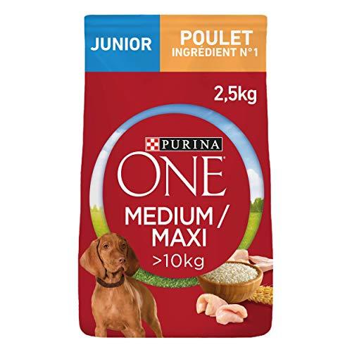 PURINA ONE MEDIUM MAXI Junior pienso Riche de Pollo con del arroz para Cachorro 2,5kg–Juego de 4