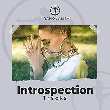 Adapting Introspection Tracks