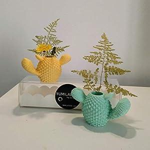 2 Mini-Kaktusvasen, Mini-Topfs, kaktus deko, mini vasen, Kaktus, Yumilab