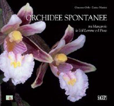 Orchidee spontanee tra Marcarolo la Val Lemme e il Piota. Ediz. illustrata