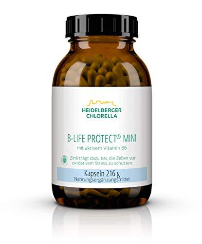 Heidelberger Chlorella – B-Life Protect mini Kapseln, mit aktivem Vitamin B6 (Pyridoxal-5-Phosphat), vegan, gute Bioverfügbarkeit, hergestellt in Deutschland, 216 g, 360 Kapseln