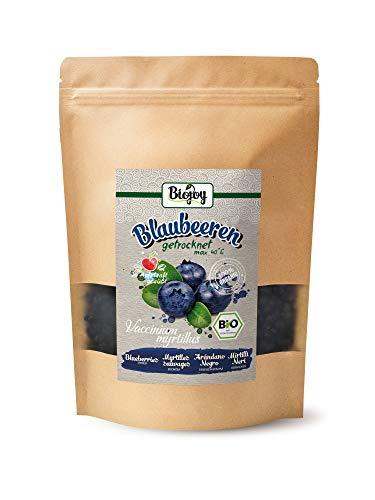 Biojoy BIO-Blaubeeren getrocknet, gesüßt mit einem Hauch BIO-Apfeldicksaft (0,5 kg)
