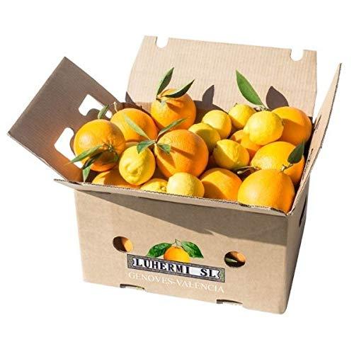 Caja Mixta de Naranjas, Mandarinas y Limones ⎜Directa de Valencia ⎜Selección de Cítricos de Huerta Valenciana (15)