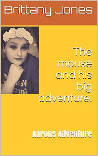 The mouse and his big adventure.: Aarons Adventure (English Edition)