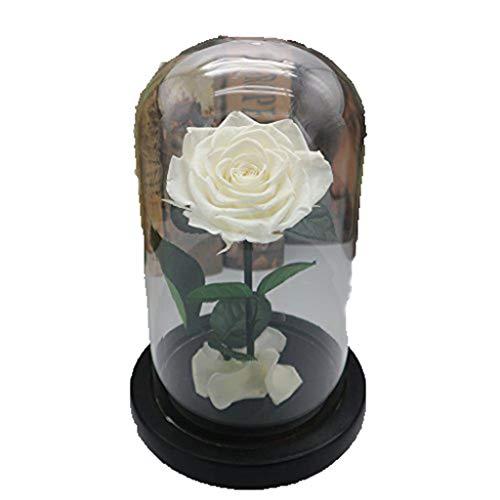 ZHHR Flor Eterna Que Dura para Siempre En Cristal Inspirado En La CÚPula Y La DecoraciÓN del Hogar Decoraciones De La Boda Regalo De San ValentÍN Regalo del DÍA De La Madre