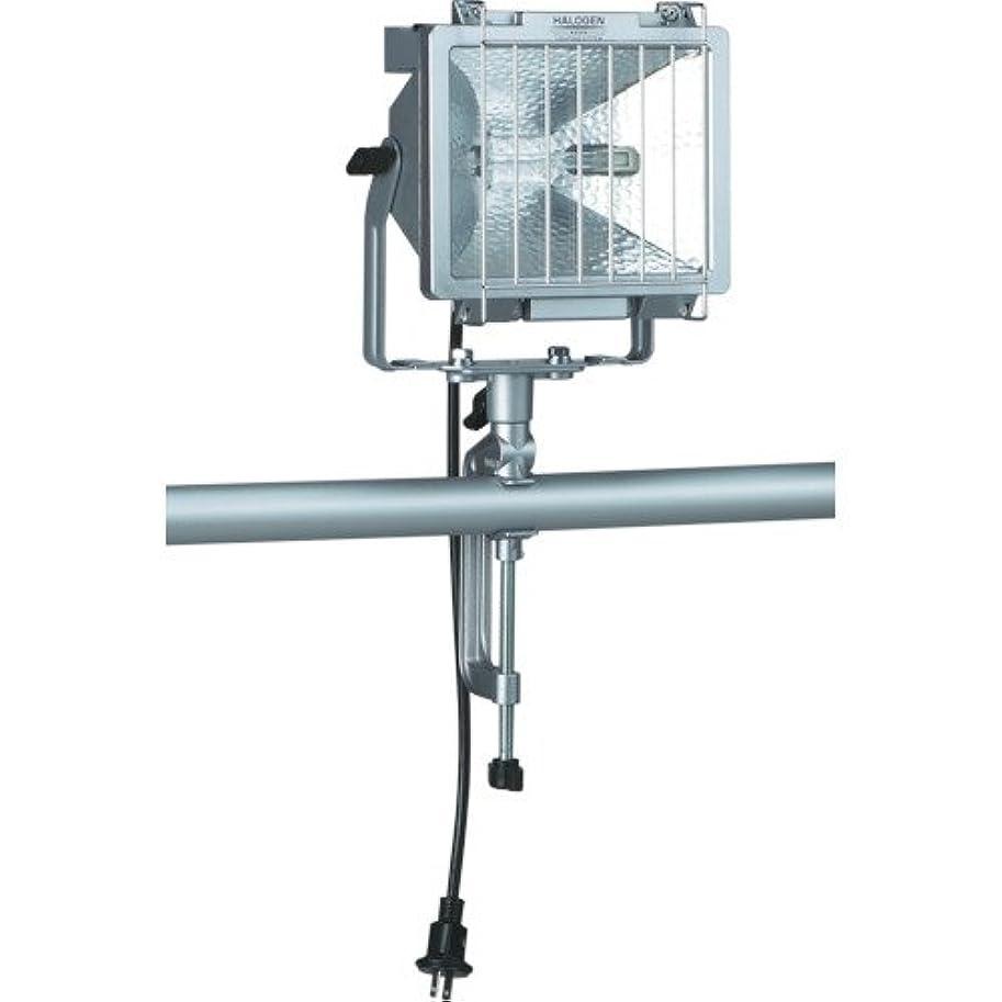 するだろうペイント免除するハタヤ 防雨型ハロゲンライト 300W 100V電線5m バイス付 PH305N