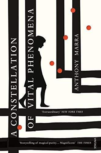 A Constellation of Vital Phenomena by Anthony Marra(2014-02-06)