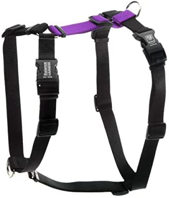 Blue 9 Pet Products Buckle Neck Balance Harness 6 Point Adjustable No Pull Harness Ideal for product image