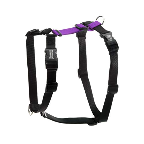 Blue-9 Pet Products Buckle-Neck Balance Harness, 6-Point Adjustable No-Pull Harness, Ideal for Dog Training, Made in The USA, Purple, Medium/Large