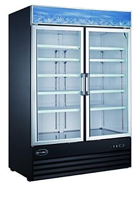 45 cu ft Commercial Merchandiser Freezer