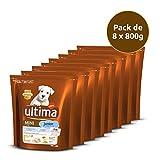 Ultima Lot de 8 Aliments pour Chien Mini Junior avec Poulet 6400 g