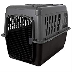 dog crate for car backseat